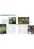 Biomangfold på Norges største gravplass