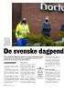 De svenske dagpend lerne