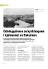 Ødeleggelsene av kystskogene i kjølvannet av fiskeriene