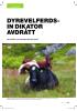 DYREVELFERDSIN DIKATOR AVDRÅTT