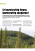 Er bærekraftig finans bærekraftig skogbruk?