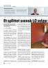 Et splittet svensk LO velger ny leder