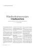 Håndverksinnovasjon i industrien