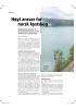 Høyt ansvar for norsk kystskog