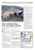 Krever tilbakebetaling etter «Nyt Norge»-merking