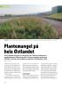 Plantemangel på hele Østlandet