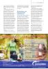 Risikofaktorer ved arbeidsrelaterte hudproblemer