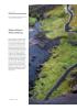 Skjervsfossen Naturvandring