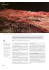 Skogen på nye digitale kart
