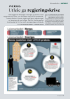 SVERIGE: Utleie ga regjeringskrise