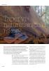 Taper vi naturmangfold i skog?
