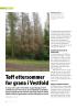 Tøff ettersommer for grana i Vestfold