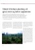 Tilskot til tettare planting vil gjeva meir og betre sagtømmer