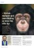 - Verden mangler god overvåkning av virus hos ville dyr