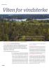 Viten for vindsterke skoger