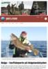 Bolga - havfiskeperle på Helgelandskysten