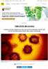 Dette må du vite om virus