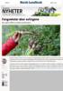 Fangvekster øker avlingene