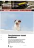 Flere kommuner trosser hundeloven