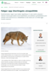 Følger opp Stortingets ulvepolitikk
