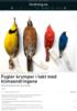 Fugler krymper i takt med klimaendringene