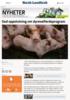 God oppslutning om dyrevelferdsprogram