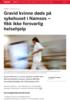 Gravid kvinne døde på sykehuset i Namsos - fikk ikke forsvarlig helsehjelp