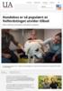 Hundekos er så populært at Velferdstinget utvider tilbud