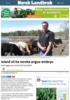 Island vil ha norske angus-embryo