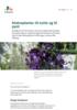 Klatreplanter til nytte og til pynt