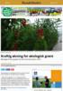 Kraftig økning for økologisk grønt