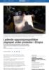 Ledende opposisjonspolitiker pågrepet under protester i Etiopia