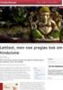 Lettlest, men noe pregløs bok om hinduisme