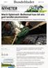 Marit Epletveit: Bollestad kan bli ein god landbruksminister