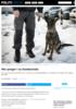 Mer penger i ny hundeavtale