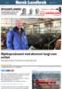 Mjølkeprodusent med økonomi langt over snittet