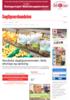 Nordiske dagligvaretrender: Nett, økologi og spissing
