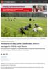 Nordmenn vil ikkje jobbe i landbruket. Dette er løysinga for å få dei ut på åkeren