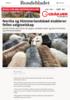 Norilia og Himmerlandskød etablerer felles salgsselskap
