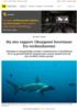 Ny stor rapport: Oksygenet forsvinner fra verdenshavene