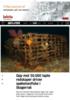 Opp mot 50.000 tapte redskaper driver spøkelsesfiske i Skagerrak