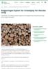 Regjeringen åpner for krisehjelp for Norske Skog