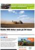 Sådde 502 dekar mais på 24 timer