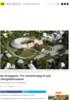Se forslagene: Tre vinnerforslag til nytt vikingtidsmuseum