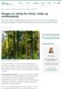 Skogen er viktig for klima, miljø og verdiskaping