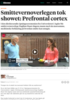 Smittevernoverlegen tok showet: Prefrontal cortex