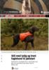 Still med lydig og trent fuglehund til jaktstart
