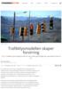 Trafikklysmodellen skaper forvirring