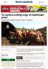 Tyr og Geno endelig enige om kjøttfesæd-priser