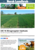 UKE 19: Nitrogenopptak i høsthvete